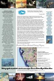 2006 calendar - Charlotte Harbor National Estuary Program