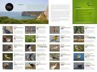 Birdwatching Algarve Brochure - VisitAlgarve