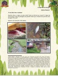 A importância da água - Beto Carrero World