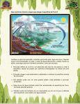A importância da água - Beto Carrero World - Page 4