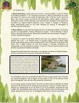 A importância da água - Beto Carrero World - Page 6