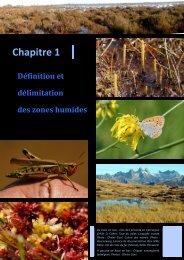 Définition et délimitation des zones humides - Pôle-relais lagunes ...