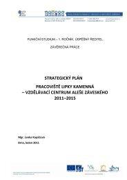 strategický plán pracoviště lipky kamenná – vzdělávací ... - NIDM
