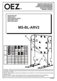 990457b Z00 - MS-BL-ARV2.cdr - OEZ