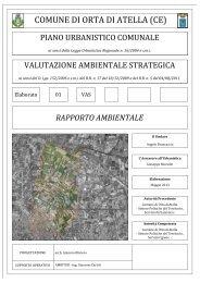 rapporto ambientale - Comune di Orta di Atella