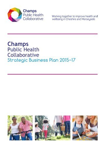 Champs business plan 2015-2017