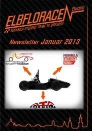 Newsletter Januar 2013