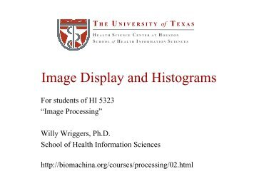 Lecture 2: Image Display and Histograms - biomachina.org