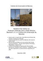 Protocolo REN-ICN.pdf - Centro de Informação REN
