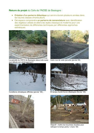 Nature du projet du Cefa de l'INDSE de Bastogne : - Sysfal