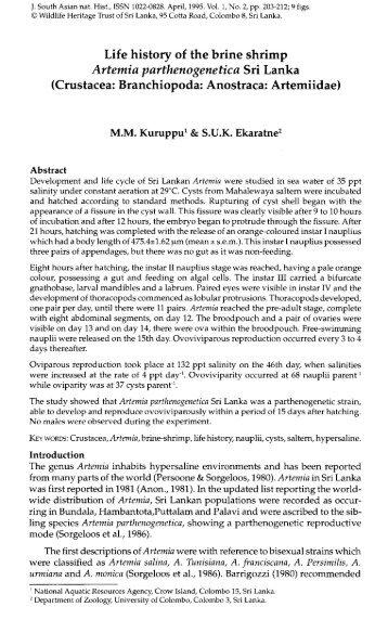 brine shrimp toxicity test pdf