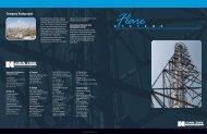 Flare Systems - John Zink Company
