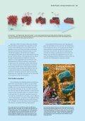 Das Container-System der Zelle - BioQuant - Seite 2