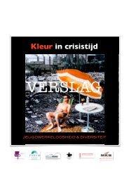 Kleur in Crisistijd verslag 3.0 - Innovatief in Werk