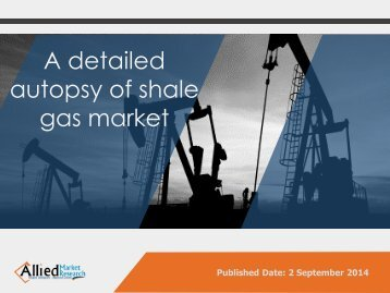 Global Shale Gas Market Forecast 2013 - 2020
