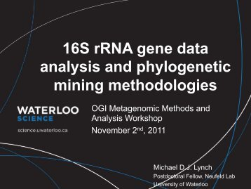 16S rRNA gene data analysis and phylogenetic mining methodologies