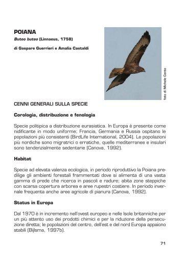 Scarica la seconda parte del volume - Parco Regionale dei Castelli ...