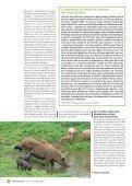 Troupeaux sous les tropiques - TransFAIRE - Inra - Page 6