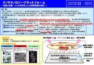 文部科学省「ナノテクノロジープラットフォーム」の概要 (PDF:553KB)