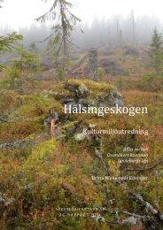 Hälsingeskogen - Bergvik Skog informerar om vindkraft