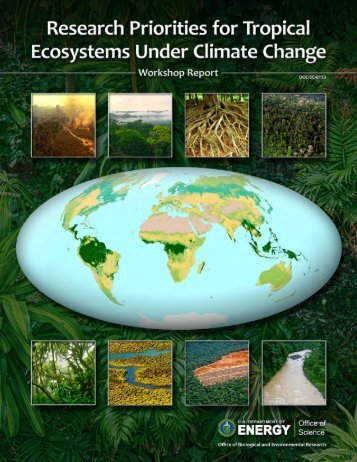 Research Priorities for Tropical Ecosystems Under Climate Change