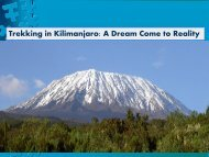 Trekking in Kilimanjaro: A Dream Come to Reality
