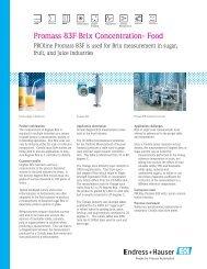 Promass 83F Brix Concentration- Food - Durable Controls