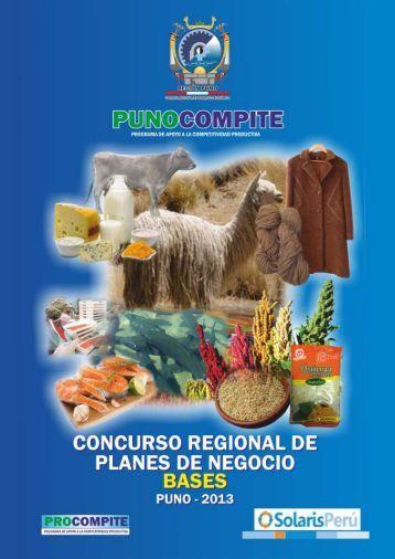 Bases del Concurso PROCOMPITE 2013 - Gobierno Regional Puno