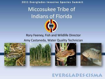 Miccosukee Tribe - Everglades Cooperative Invasive Species ...