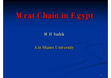 Meat Chain in Egypt - Young-Train