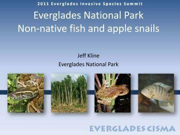 Fish - Everglades Cooperative Invasive Species Management Area
