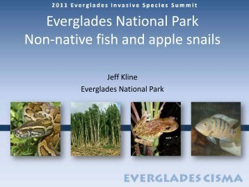 Fish - Everglades Cooperative Invasive Species Management Area