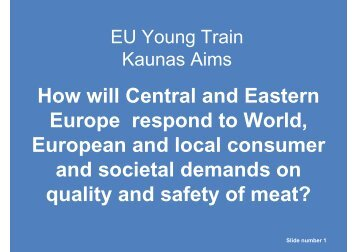 How will Central and Eastern Europe respond to ... - Young-Train