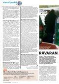 Spriten kan räcka till hela världen - BioAlcohol Fuel Foundation - Page 4