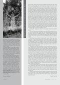 Téma: RITU Á L Z obsahu: Ohnisko alebo mreže 2 - Asociácia ... - Page 2