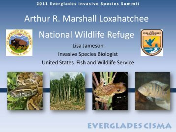 Loxahatchee NWR - Everglades Cooperative Invasive Species ...