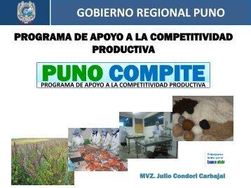Diapositiva 1 - Gobierno Regional Puno