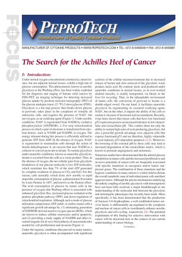 The Search for the Achilles Heel of Cancer