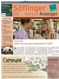 Söflinger Herbst-Anzeiger vom Oktober 2010 (PDF 14 MB)