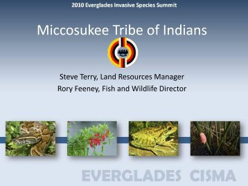 Miccosukee Tribe of Indians - Everglades Cooperative Invasive ...