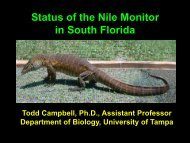 Status of the Nile Monitor in South Florida