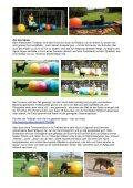 Treibball – viel Spaß mit großen Bällen - mit Anja ... - Seehotel Moldan - Seite 2
