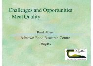 Challenges and Opportunities - Meat Quality - Young-Train