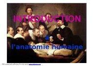 introduction à l'anatomie humaine [Lecture seule]