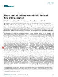 Neural basis of auditory-induced shifts in visual time-order perception