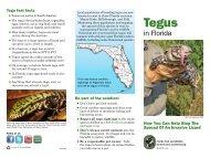 Tegus in Florida brochure 2012 - Everglades Cooperative Invasive ...
