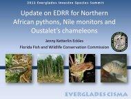African pythons/ Nile Monitors - Everglades Cooperative Invasive ...
