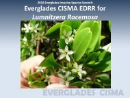Everglades CISMA EDRR for Lumnitzera Racemosa