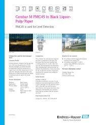 Cerabar M PMC45 in Black Liquor- Pulp/Paper - Durable Controls
