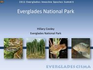 Plants - Everglades Cooperative Invasive Species Management Area